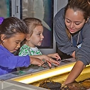 Aquarium Touch Tanks